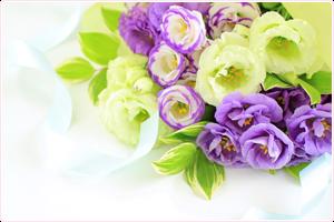 フューネラルの花束
